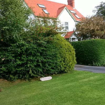 Brook House Garden
