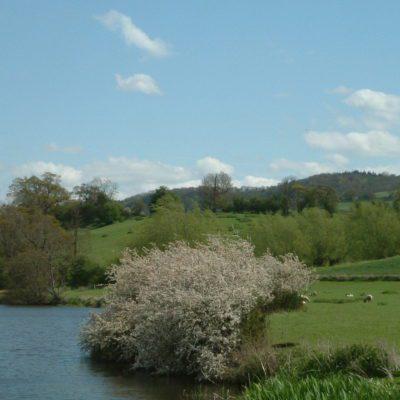 Bottom of Bredon Hill