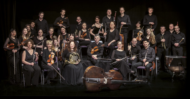 Orchestra Of The Swan 1