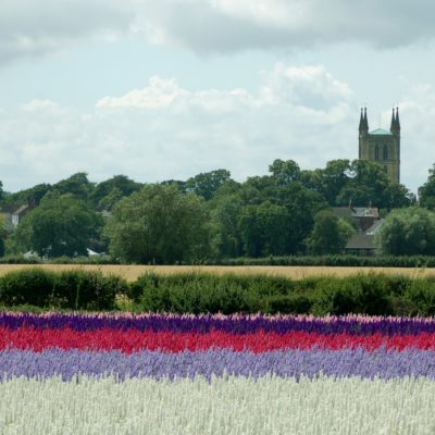 Pershore Abbey And The Real Flower Petal Confetti Company