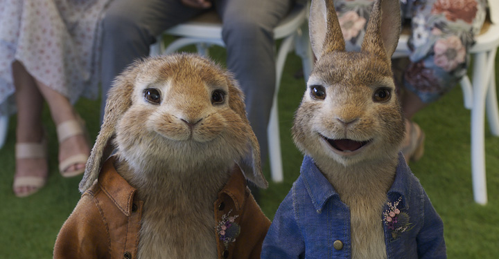 Benjamin Bunny And Peter Rabbit