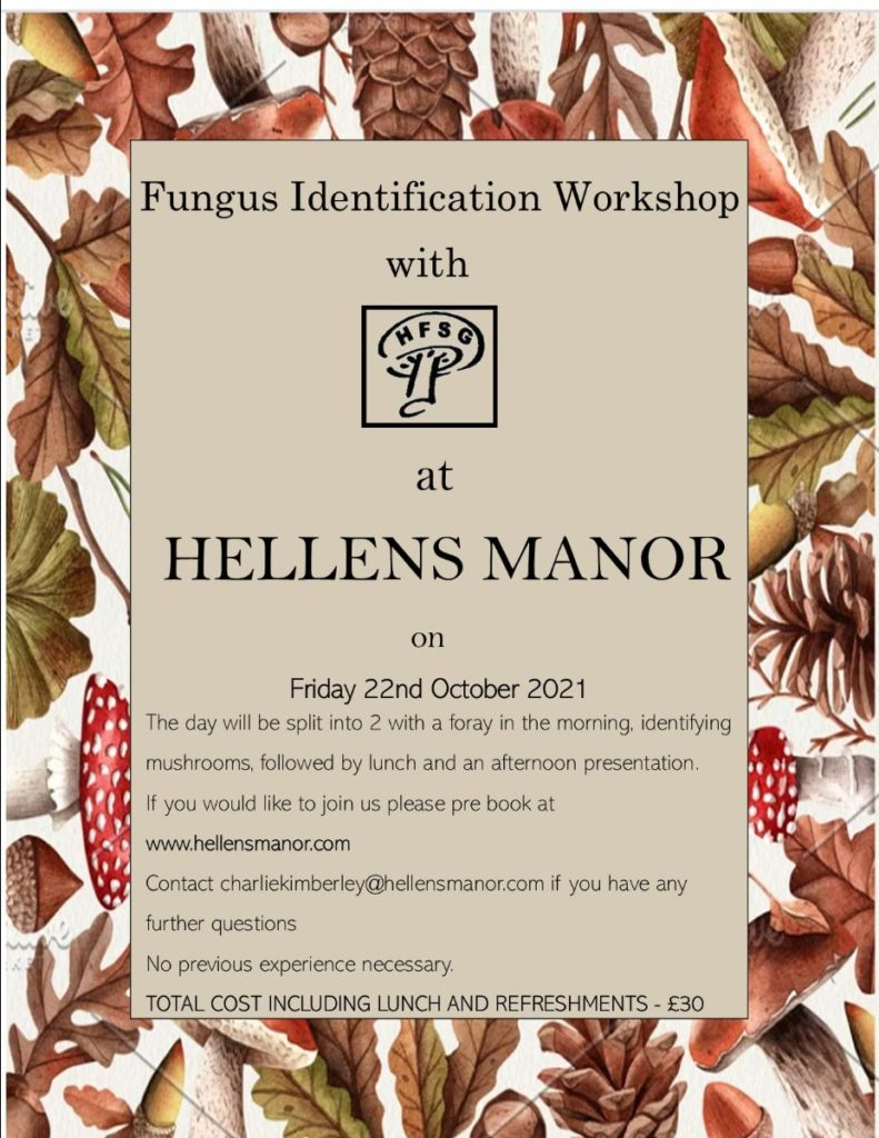 Fungus Identication Workshop.